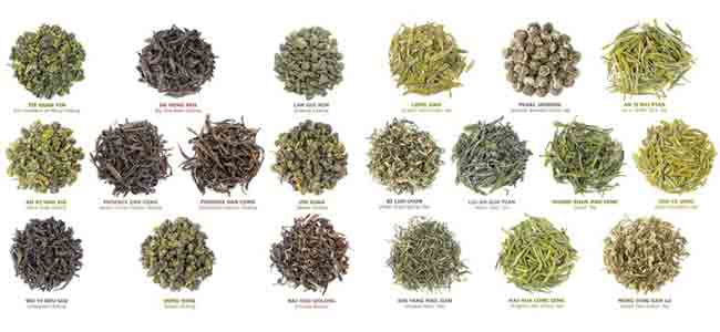 Types of Green Tea