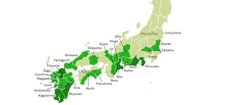 Green Tea Regions in Japan